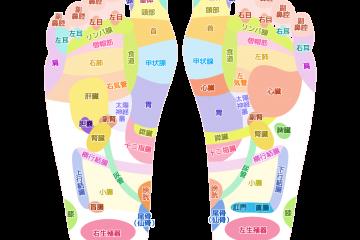 リフレクソロジー(足裏・足つぼ)